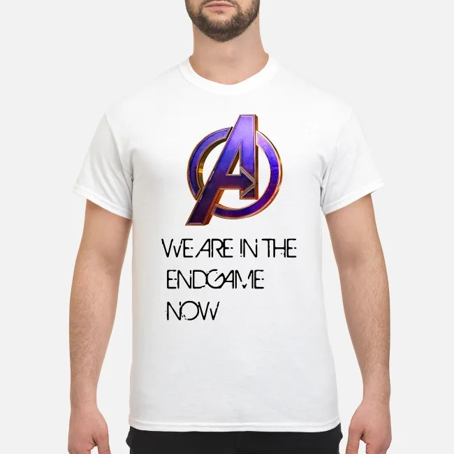 Marvel Avengers Endgame We are in the Endgame now shirt